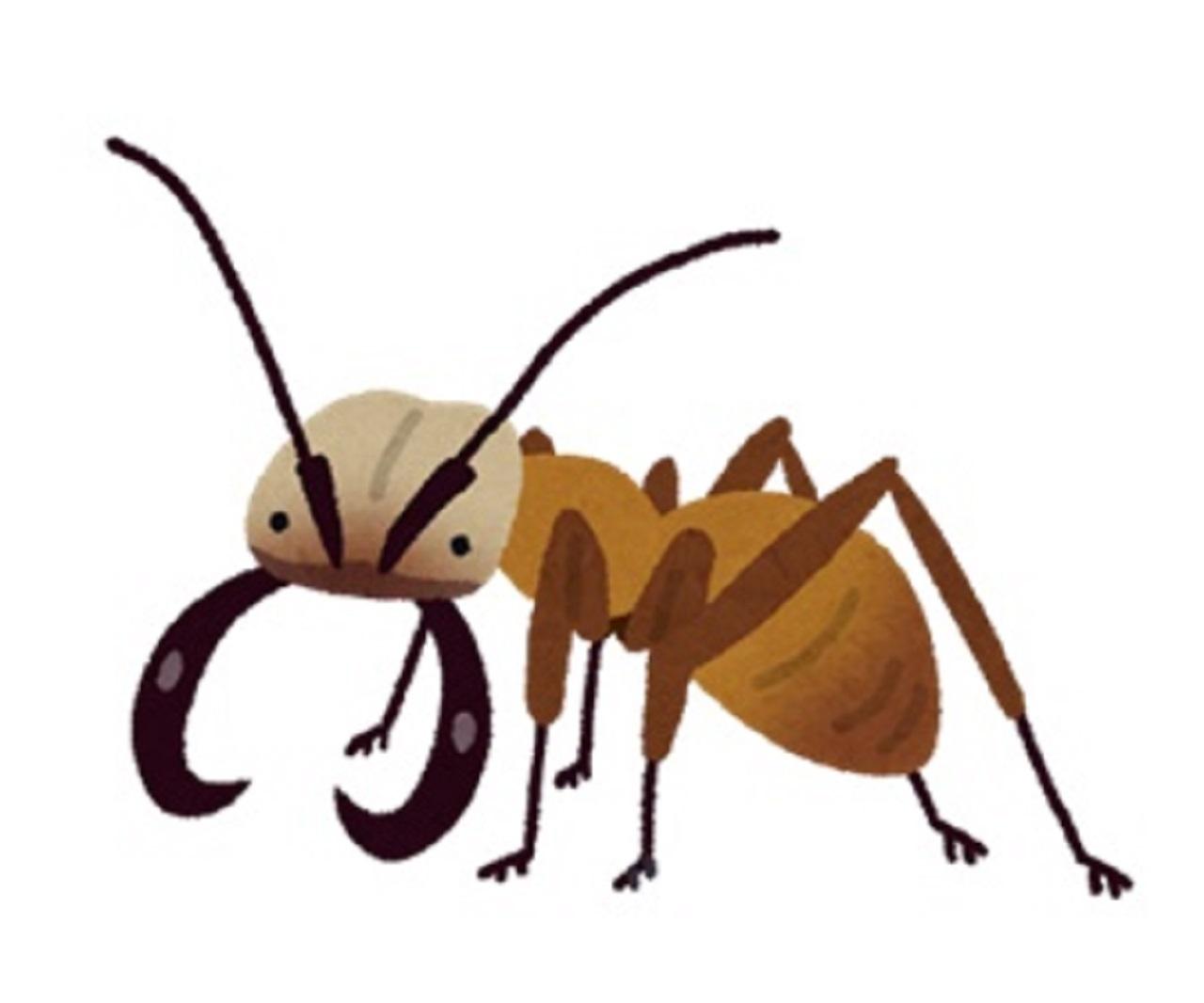 アリの侵入防止-01